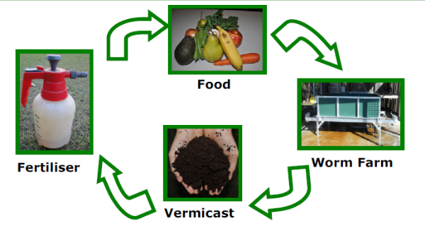 worm_farm_1.png