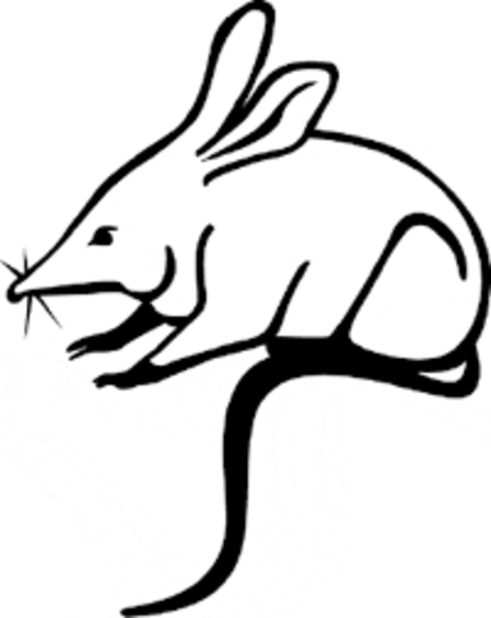 bilby.png